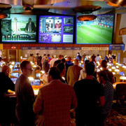 Sports Betting and Bookmakers in Australia